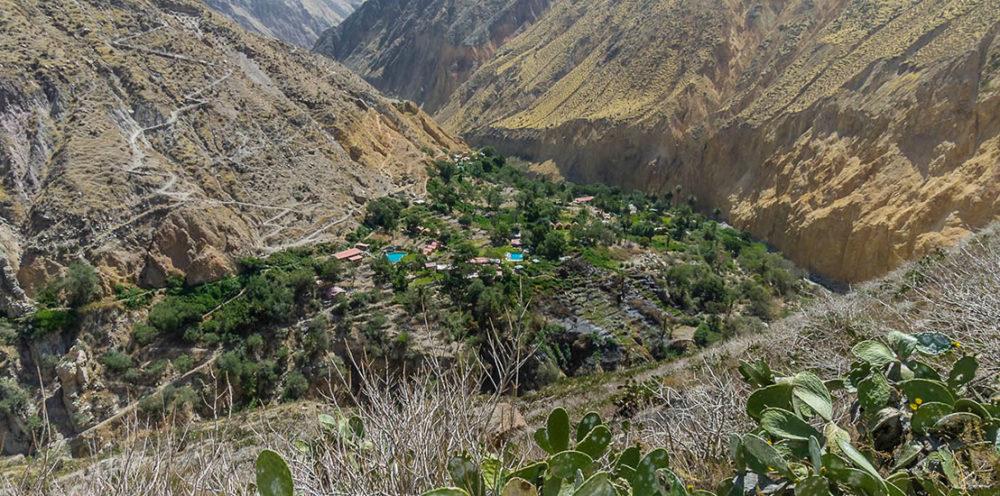 Colca Canyon Trekking to Llahuar